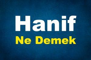 Hanif Ne Demek